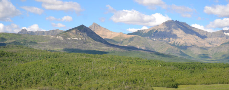 Foothills at Waterton (Alberta)